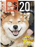 『柴犬ライフ〜20歳まで生きる方法〜』 (2020年秋号(「一個人」11月号増刊))