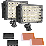 NEEWER 2-Pack 160 LED CN-160 Dimmable Ultra High Power Panel Digital Camera/Camcorder Video Light, LED Light for Canon, Nikon