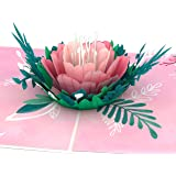 Lovepop Garden Rose Bloom Pop Up Card - 3D Card, Greeting Card, Valentines Day Card, Anniversary Card, Romance Card, Card for