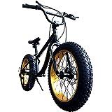 Eizer(アイゼル) 【ファットバイク】迫力の極太 ファットバイク Wディスクブレーキ NEWアルミホイール 3D立体フレーム Shimno7Speed 20インチ20x4.1/4 FATBIKE SNOWBIKE F120 20インチ