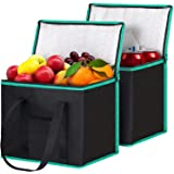 WiseLife Reusable Shopping Bags Grocery Bags [ 2 Pack ] with Handles, Insulated Bags Food Delivery Bags Cooler Bags with Zipp
