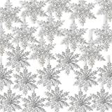 BANBERRY DESIGNS Acrylic Iridescent Snowflake Christmas Ornaments - Set of 24 Assorted Styles of Snowflakes - Clear Acrylic w