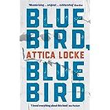 Bluebird, Bluebird: 1