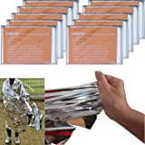 """Leberna Emergency Blanket Survival Gear   Foil Mylar Thermal Blankets 59"""" x 87"""" inches (Pack of 10)   BIG Double Sided Escape"""