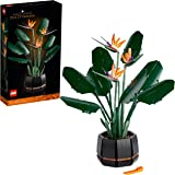LEGO 10289 Botanical Collection Bird of Paradise, Flowers & Plants Model, DIY Set for Adults, Creative Gift Idea