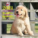 2021年 大判カレンダー ゴールデン・レトリーバー (誠文堂新光社カレンダー)