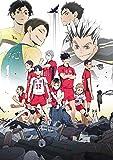 【初回限定特典あり】OVA『ハイキュー‼ 陸 VS 空』 [DVD] (スリーブケース仕様) (複製原画ポストカードセット封入) (スペシャルリーフレット封入)