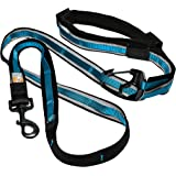 Kurgo 6-in-1 Quantum (TM) Hands Free Dog Leash for Walking, Running or Hiking & Reflective Dog Leash with Adjustable Waist Be