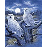 DIY 5D Diamond Painting by Number Kits, Full Drill Crystal Rhinestone Diamond Embroidery Paintings Pictures Arts Craft for Ho
