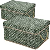 Livememory Decorative Storage Boxes Foldable Storage Bins with Lids and Handles for Office, Bedroom, Closet - Green Rattan We