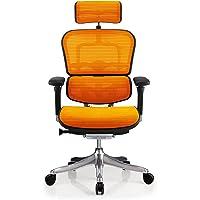 エルゴヒューマン プロ オフィスチェア オレンジ ヘッドレスト付き 3Dファブリックメッシュ ergohuman PRO…