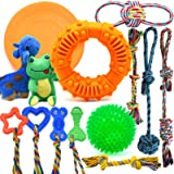 LEGEND SANDY Dog Chew Toys for Puppies Teething, Super Value 14 Pack Puppy Toys for Small Dog Toys Squeaky Toys for Dogs Rubb