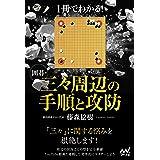 1冊でわかる! 囲碁・三々周辺の手順と攻防 (囲碁人ブックス)