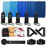 METEOR Essential 11pcs Resistance Band Set, Resistance Bands, Resistance Loop Set, Natural Latex Fitness Bands for Workout, Y