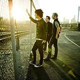 Green Day Live Wakkoaoer