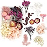 Real Natural Dried Flowers for Art Craft Mixed Multiple Colorful Dried Flowers for Soap Candle Scrapbooking DIY Resin (Pink D