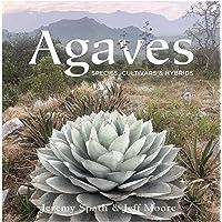 Agaves:: Species, Cultivars & Hybrids