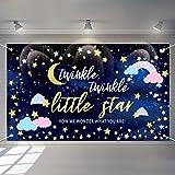 Twinkle Twinkle Little Star Gender Reveal Backdrop Pink Blue Cloud Banner Glitter Little Star Birthday Baby Shower Backdrop G
