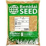 ホワイトクローバー種子 1kg 紅大貿易