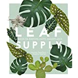Leaf Supply A guide to keeping happy house plants