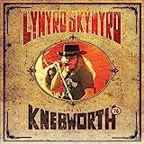 Lynyrd Skynyrd Live At Knebworth '76 (CD/DVD)