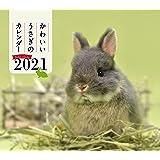 2021年 ミニ判カレンダー かわいいうさぎのカレンダー (誠文堂新光社カレンダー)