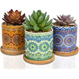 CASALUXE Artificial Succulent Plants, Set of 3– Two-Toned Real Touch Plastic Fake Greenery in Beautiful Mandala Pattern Ceram