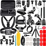 Neewer 58-In-1 Action Camera Accessory Kit Compatible with GoPro Hero 9 8 Max 7 6 5 4 Black GoPro 2018 Session Fusion Silver