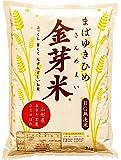 【金芽米】まばゆきひめ(無洗米)(令和2年産)2kg(4.5kgと9kgもあります)
