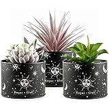 Pot Set of 3 Artificial Succulents in Plant Pots for Boho House Decor Indoor Faux Fake Succulent Plants in Metallic planters