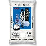 【精米】 岐阜県産 白米 美濃ハツシモ 5kg 令和2年産