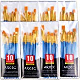 (80 Pack) - Paint Brush Set, Nylon Hair Brushes for Acrylic Oil Watercolour Painting Artist Professional Painting Kits (80 Pa