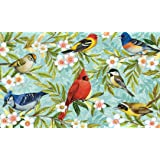 Toland Home Garden Bird Collage 18 x 30 Inch Decorative Floor Mat Colorful Spring Flower Cardinal Jay Doormat