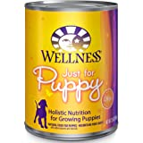 Wellness Complete Health Natural Wet Canned Puppy Food, Puppy Chicken & Salmon 12.5-Ounce Can (Pack of 12)