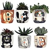 Window Garden - Small Kitty Pot Collection of 6 - Purrfect for Mini Succulents, African Violets or Small Fairy Garden Plants.