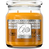 Aroma From Nature Amber Leather 13 oz Home Collection Scented Candle - 1 Pack - Aromatherapy Candles - Home Fragrance - Apoth
