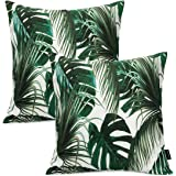 Booque Valley Tropical Leaves Pillow Covers, Pack of 2 17 x 17 Inch Palm Tree Leaves Cushion Covers, Vibrant Digital Printing
