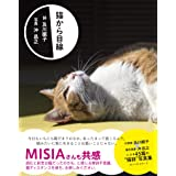 猫から目線 (ワニの本)