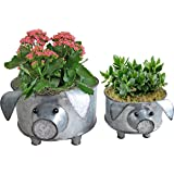 ShabbyDecor Galvanized Pig Standing Bowel for Fruit Container or Decorative Greenery Planter Set of 2