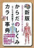 新版 からだのしくみカラー事典 ― 人体のすべてを部位別にくわしく解説