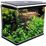 Dynamic Power Curved Glass RGB LED Fish Tank 52L (AQ-FT52L-BK)