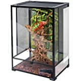 "REPTI ZOO 24"" x 18"" x 36"" Reptile Tall Glass Terrarium Rainforest Habitat Double Hinge Door with Screen Ventilation Reptile T"
