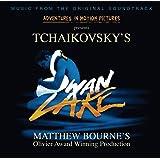Swan Lake [Matthew Bourne version]