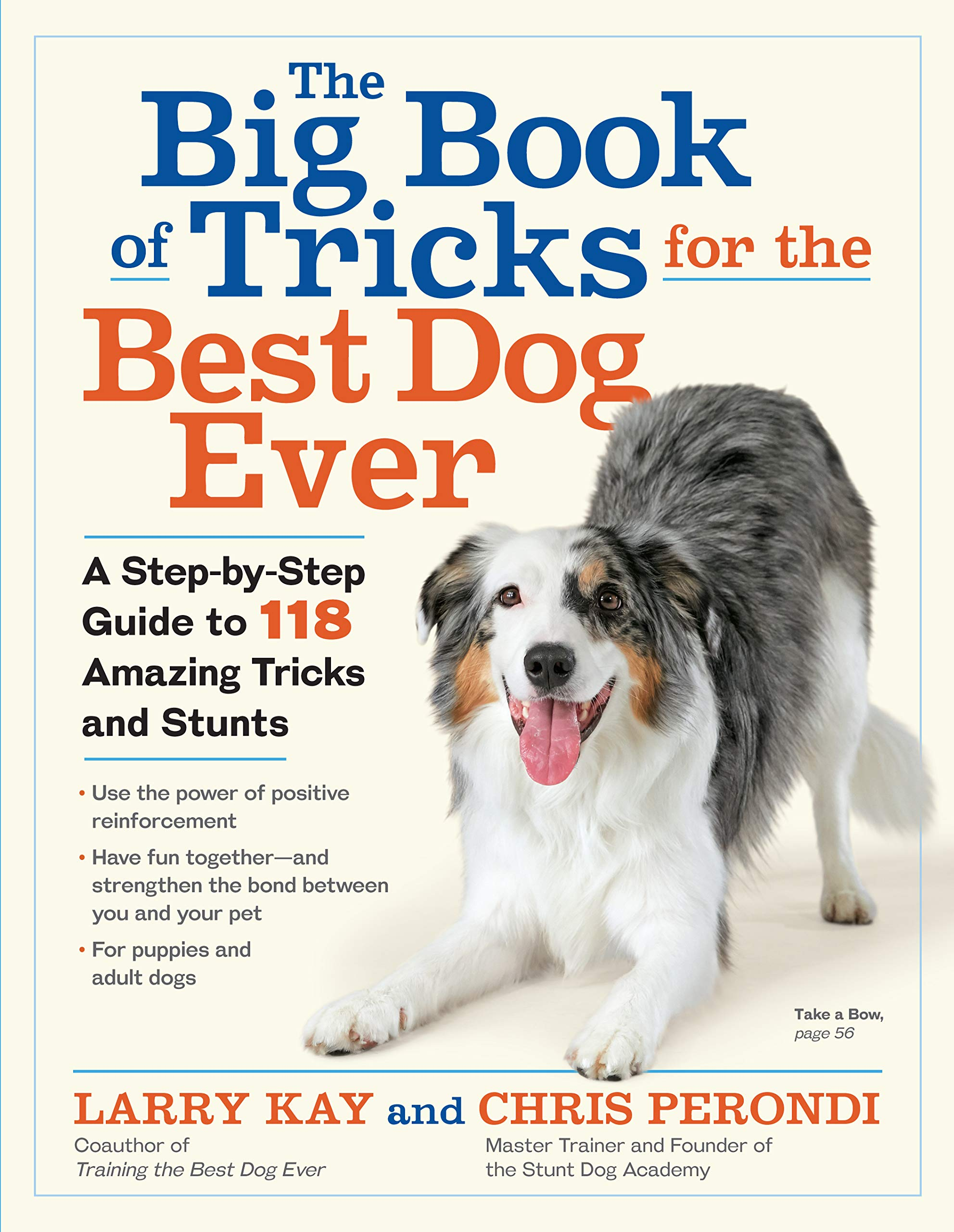 The Big Book of Tricks for the Best Dog Ever: A Step-by-Step Guide to 112 Amazing Tricks and Stunts 1