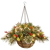 National Tree 20 Inch Wintry Pine Hanging Basket with Branch Sprigs, Red Berries, Cones and 35 Battery Operated Warm White LE