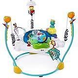 Baby Einstein Journey of Discovery Jumper, Multi
