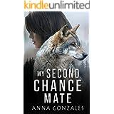 My Second Chance Mate: A Shifter Romance