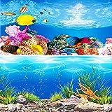 水槽 魚タンク バックスクリーン 両面印刷 背景 水族館ポスター 水槽の飾り -A- (60x40cm)