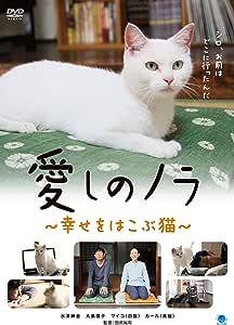 愛しのノラ ~幸せをはこぶ猫~ [DVD]