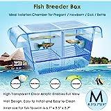 capetsma Fish Breeder Box, Hang-on Nursery Fish Tank with Breeding Hatching Incubator Acclimation Box, Perfect Fish Tank Divi
